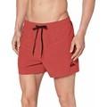 Baddräkter Quiksilver BA?ADOR Everyday Stretch Shorts