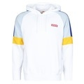 Sweatshirts Levis RELAXED PIECED 1/4 ZIP BLOCKED STRIPE SL